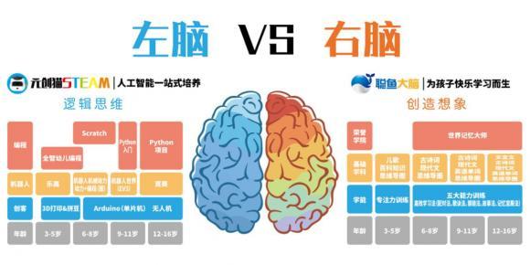 元创猫STEAM教育,孩子学习提升与逻辑思维记忆离不开