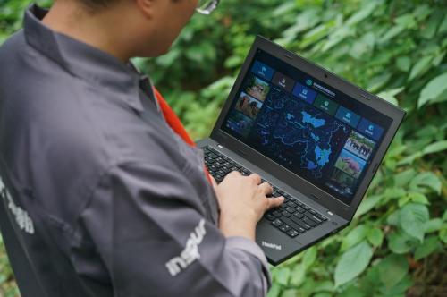 马云号召用科技保护亚洲象 这家企业已率先践行