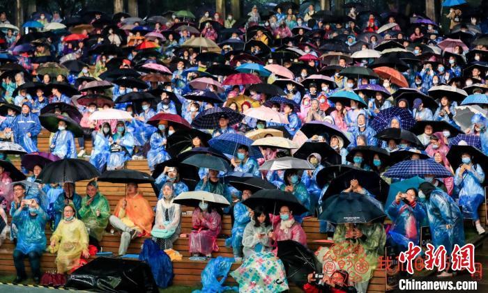 """风雨无阻的南京森林音乐会为今年的黄金周带来了一场""""美谈""""。主办方供图"""