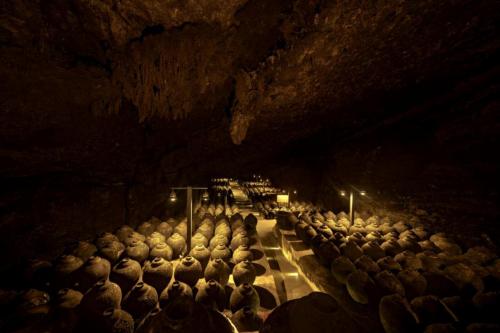 来电科技独家入驻郎酒庄园,让白酒文化体验之旅更来电