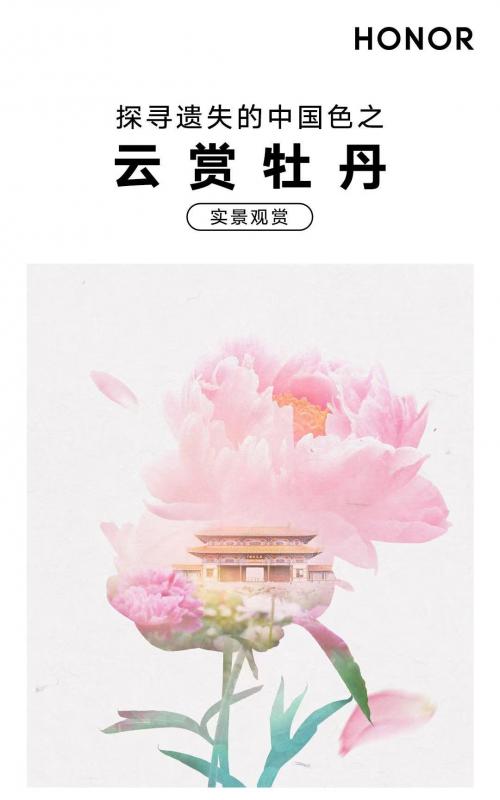 探寻遗失的中国色走进洛阳 荣耀V40系列还原千年非遗真彩