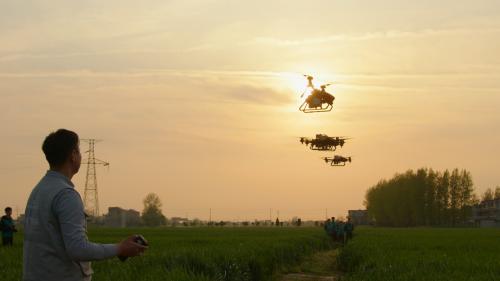 助力安徽小麦统防统治,极飞以科技为农业病虫害防治添力